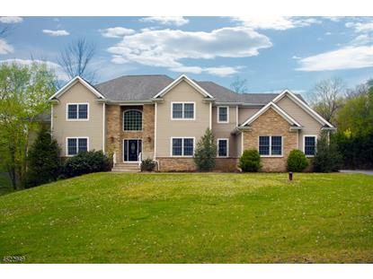8 Dogwood Lane , Warren, NJ