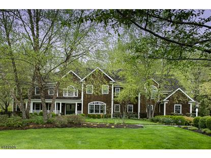 63 Pickle Brook Rd  Bernardsville, NJ MLS# 3304254