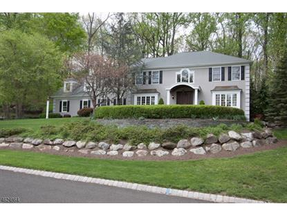 5 Byram Ct , Mendham, NJ