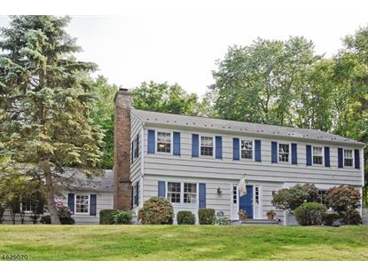 36 WINDING WAY , Bernardsville, NJ