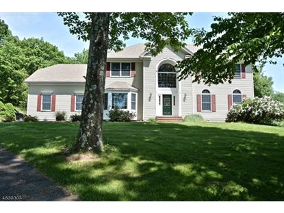 16 Bridle Path , Bethlehem Township, NJ