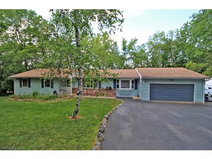 7 Old Mountain Rd , Clinton Twp, NJ
