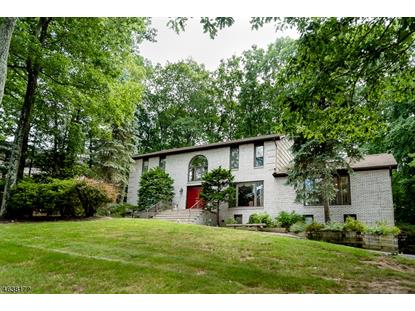 26 Black Birch Dr , Randolph, NJ