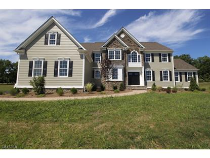 5 Partridge Run , Raritan Township, NJ