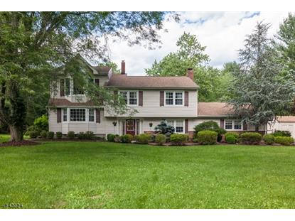 22 Meadowview Rd , Bernards Township, NJ