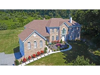 15 Ridgeline Dr , Washington Township, NJ