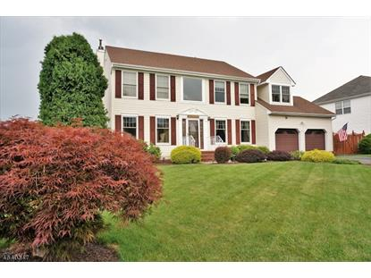 15 Mulligan Drive , Mount Olive, NJ