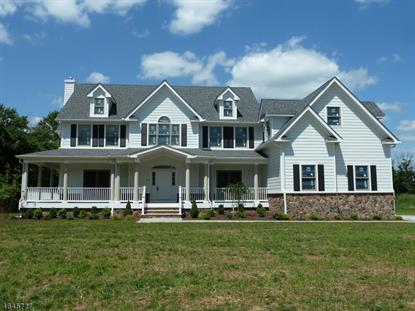 Hillsborough nj homes for sale for New construction windows for sale
