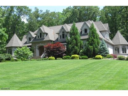 24 Old Boonton Rd  Denville, NJ MLS# 3325304
