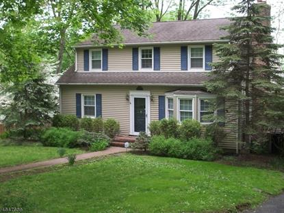 496 Mt.Kemble Ave , Harding Twp., NJ