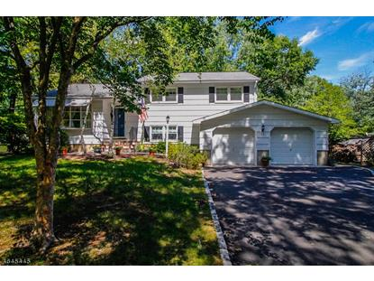 17 Briar Cir , Green Brook, NJ