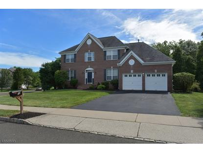 12 Stone House Dr , Readington Twp, NJ