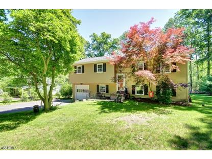 1076 Rector Rd  Bridgewater, NJ MLS# 3330450