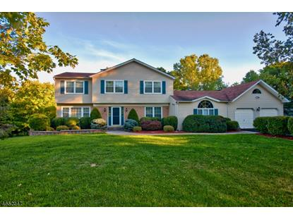 167 Flocktown Rd , Washington Township, NJ