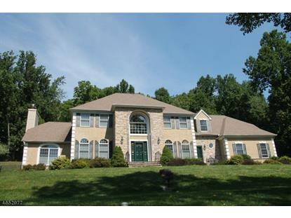 12 SHADY MILL LN , Holland Township, NJ