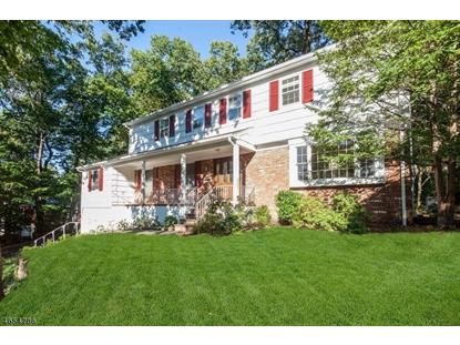 37 OVERLOOK DR  Berkeley Heights, NJ MLS# 3333271