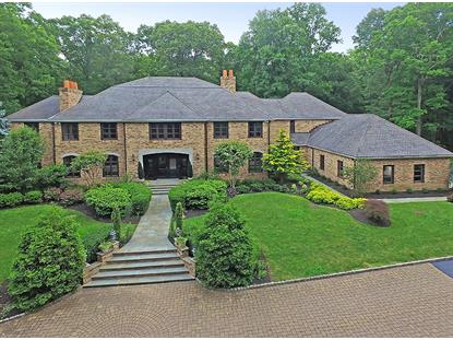 106 Ravine Lake Rd  Bernardsville, NJ MLS# 3333611