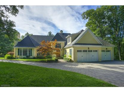 66 Long Hill Rd  Harding Twp., NJ MLS# 3333885