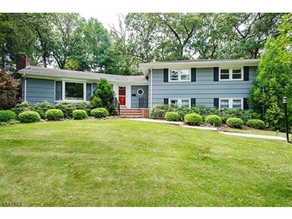 31 Sussex Rd  Berkeley Heights, NJ MLS# 3335501