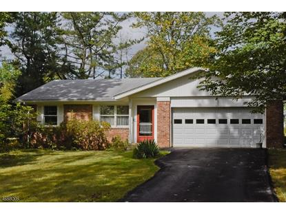 20 Hemlock Dr , Washington Township, NJ