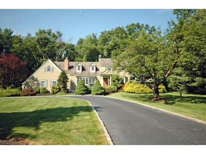 41 Vail Ln , Watchung, NJ
