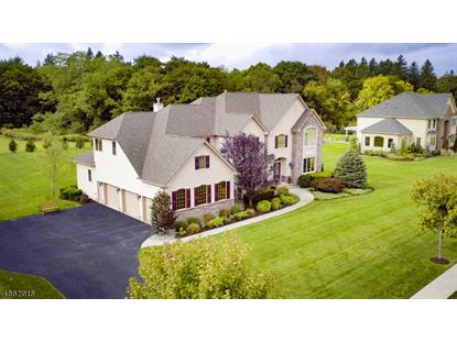 1 PHILHOWER CT , Denville, NJ