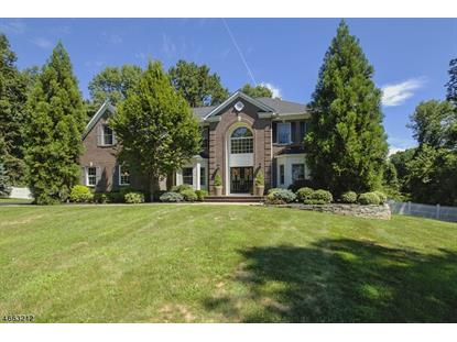 14 Hardin Ct , Chester, NJ