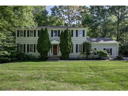 florham park singles Home for sale at 1 manker dr, florham park, nj 07932 place a bid, view photos and more on this 4 bed(s), 2 bath(s), 2,455 sq ft single family property.
