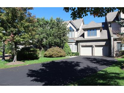 235 Cambridge Oaks , Park Ridge, NJ