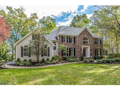 5 Wood Hollow Dr , Union Township, NJ