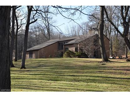 99 COUNTRY ACRES DR  Union Twp., NJ MLS# 3346189