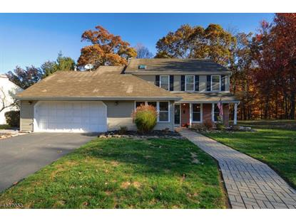 7 Chippewa Trl , Branchburg, NJ