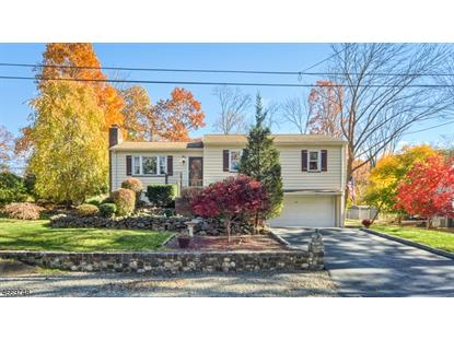 32 Forest Ter , Wayne, NJ