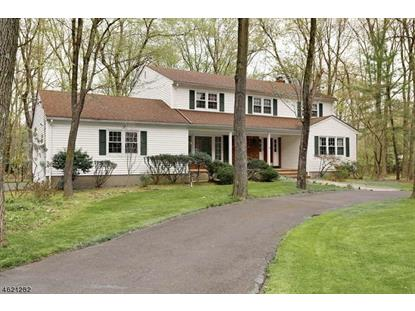 853 High Mountain Rd  Franklin Lakes, NJ MLS# 3347834