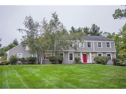 27 Eagle Nest Rd , Morris Township, NJ