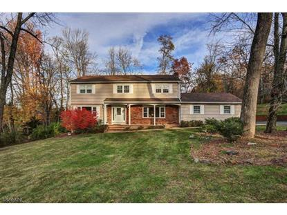 42 Blue Star Dr , Long Hill Twp, NJ