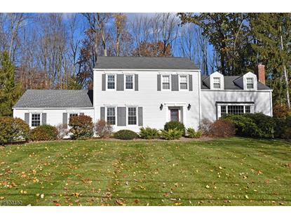 23 Pepperidge Rd  Morris Township, NJ MLS# 3348638
