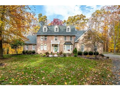 114 Black River Rd , Washington Township, NJ