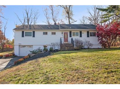 7 Locust Pl , Livingston, NJ