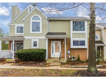 40 Whitehall Ct  Hillsborough, NJ MLS# 3353769