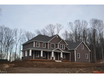 24 EAGLES NEST RD  Green Twp, NJ MLS# 3356479