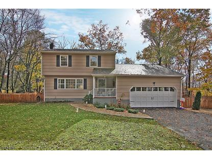 2 Stella Dr  Bridgewater, NJ MLS# 3358062