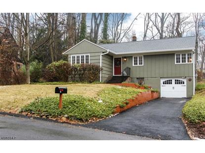 47 W Lake Blvd  Morris Township, NJ MLS# 3358162