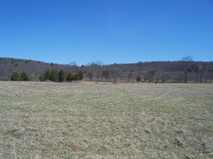 00000 HWY 206 & CLOVE ROAD  Montague Township, NJ MLS# 3358742
