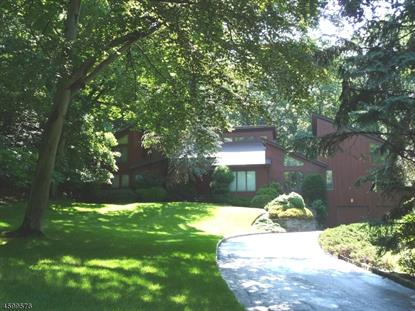 11 TIMBER RIDGE DRIVE  Warren, NJ MLS# 3358800