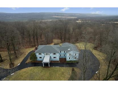 132 Lower Unionville Rd  Wantage, NJ MLS# 3359575