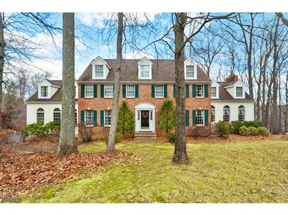 122 Forest Dr , Lebanon Twp, NJ