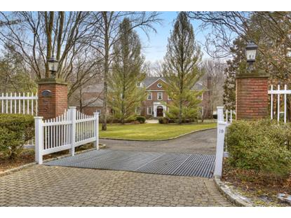 19 Country Dr  Harding Twp., NJ MLS# 3360820