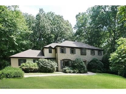 7 Honeyman Rd  Tewksbury Twp, NJ MLS# 3364103