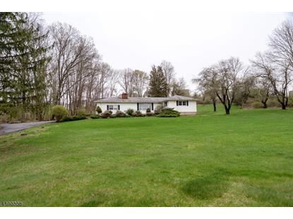 5 The Trl  Hackettstown, NJ MLS# 3365914
